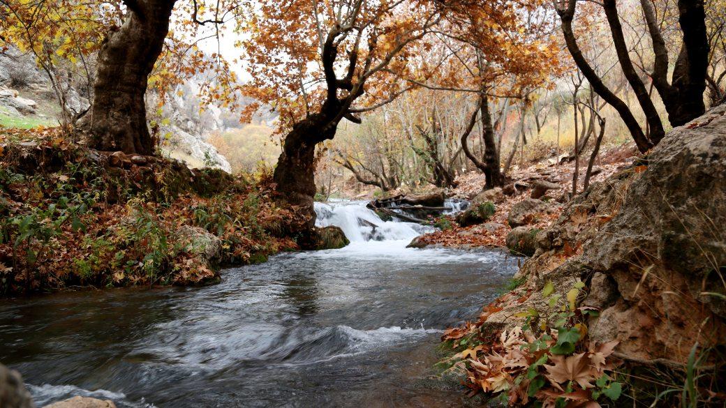 cascade-environment-flow-696941